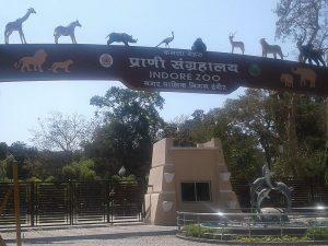 Зоопарк Индора