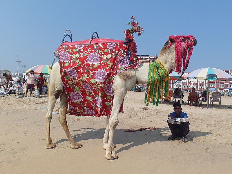 Пляж Пури Индия