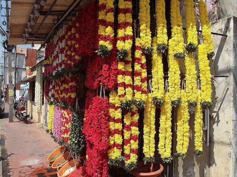 Цветы в Индии
