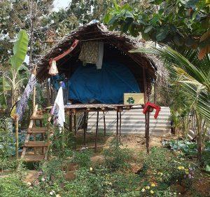 Экзотическое жилье в Тируваннамалае
