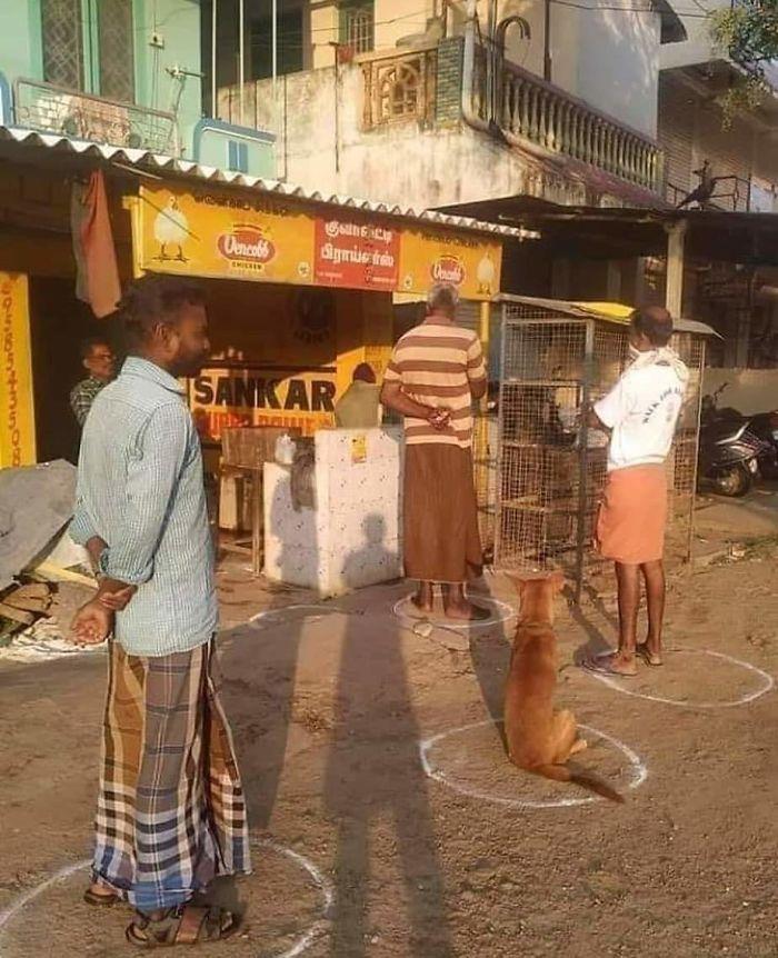 Социальное дистанциироваие в Индии