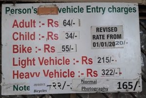 Стоимость билетов в SGNP
