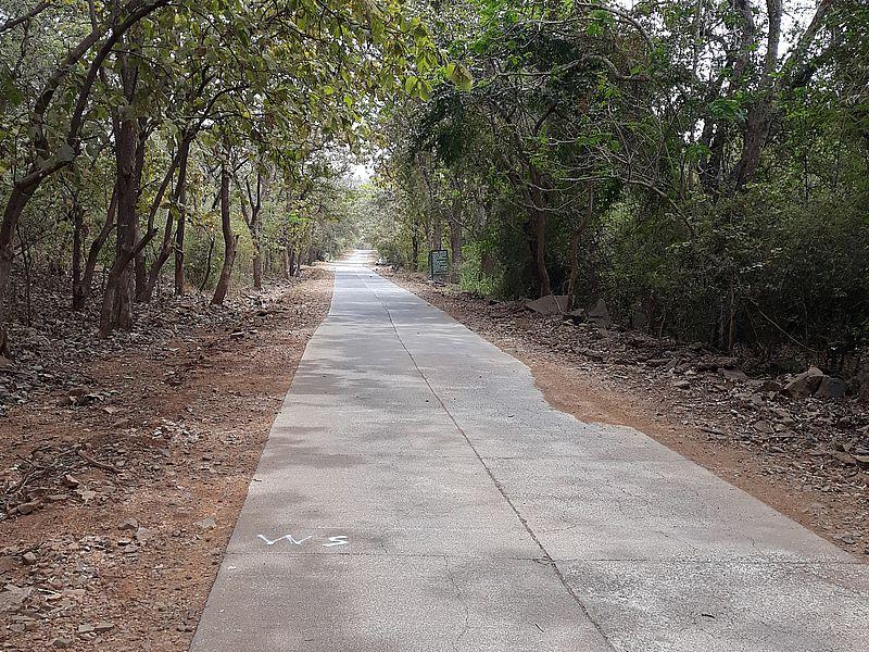 Парк Боривали