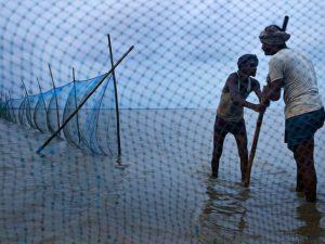 Рыбаки Индии