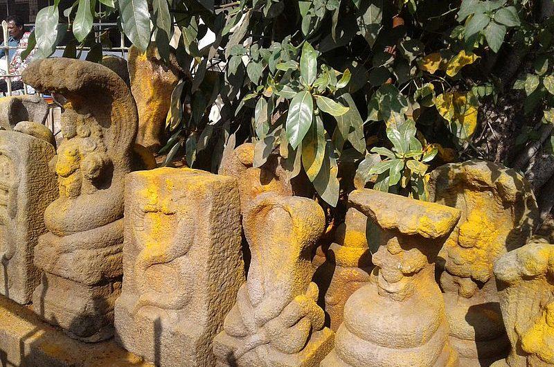 Наг Панчами: день поклонения змеям