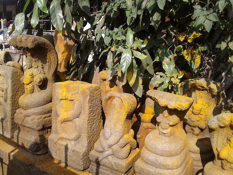 Наги змеи в Индии