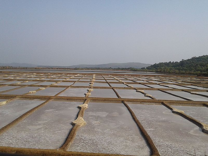 Соляные пруды