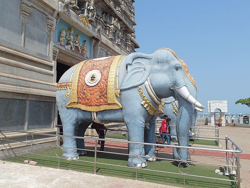 Слоны в Индии