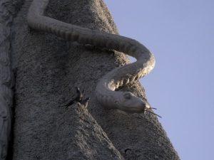 Змея на статуе Шивы