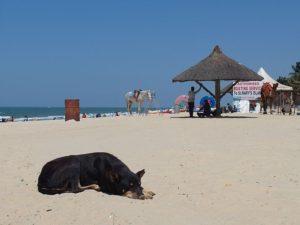 Пляж Мальпе