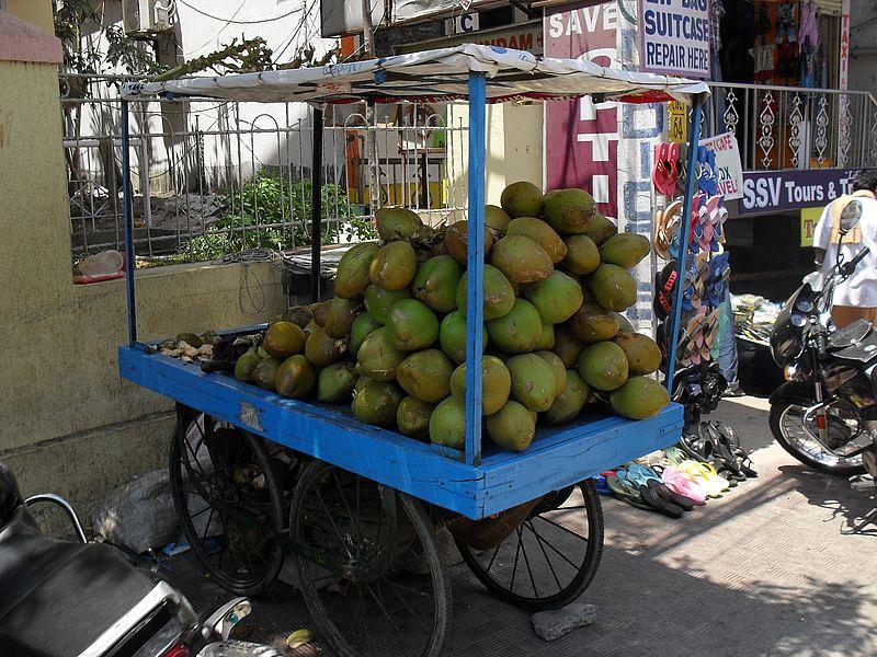 Кокосы в Индии