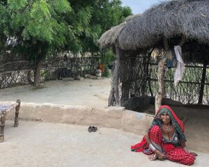 Сельская местность Раджастана