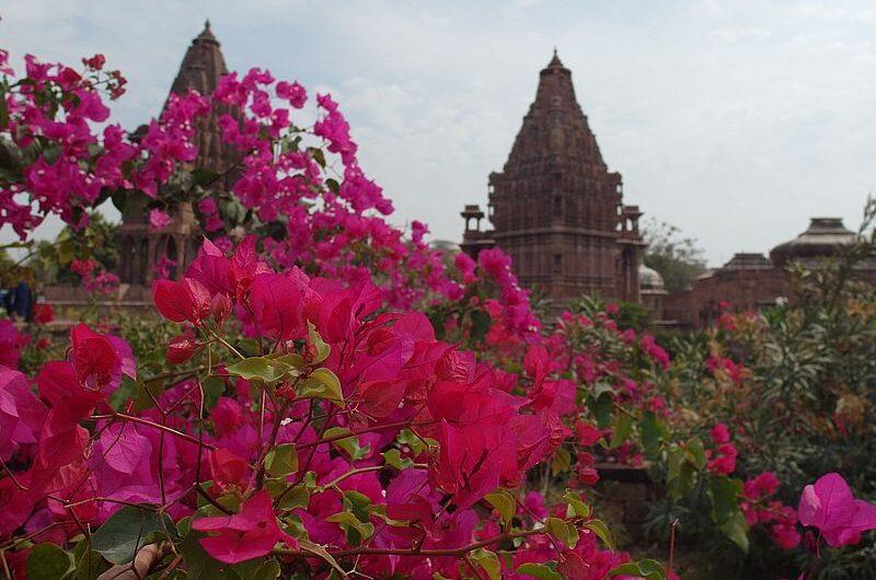 Куда съездить на экскурсию из Джодхпура