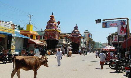 Колесницы в Рамешвараме