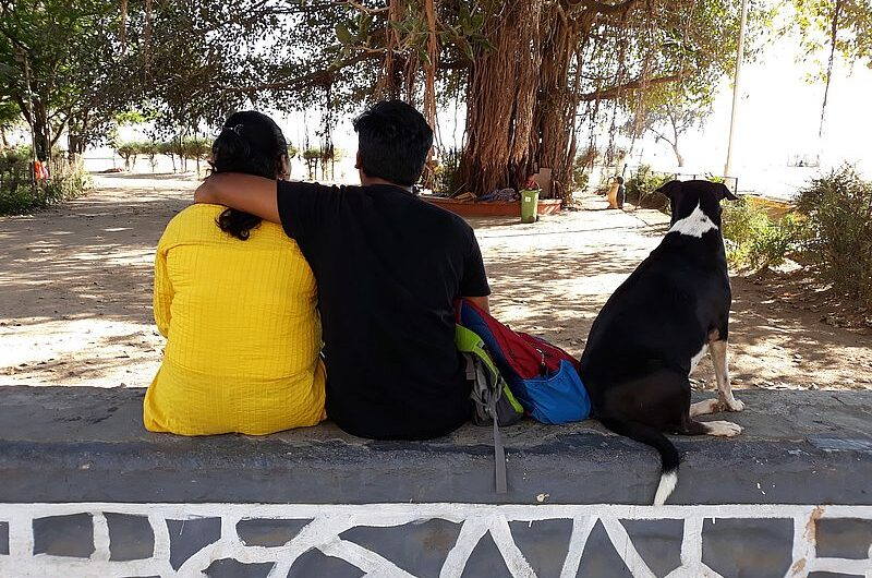 ТОП-7 мест, куда поехать в Индии на медовый месяц