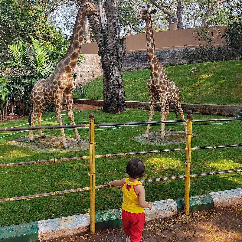 Зоопарк Майсура