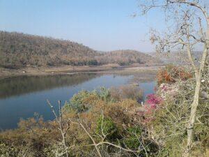 Нармада река