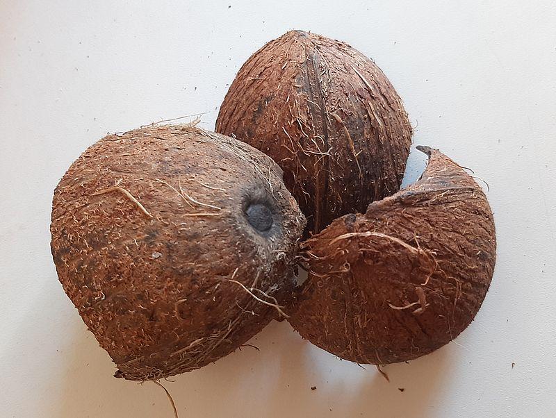 Кокос в Индии