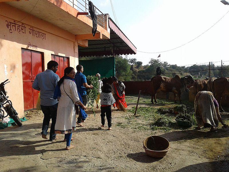 Бхартрихари гошала