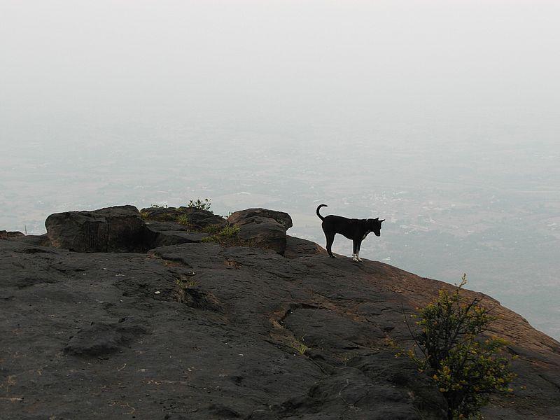 Вершина Аруначалы