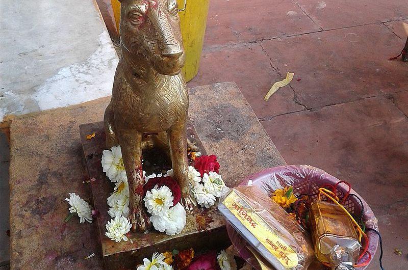 Shri Kaal Bhairav Temple – самый странный индуистский храм