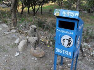 Мусорка в Индии