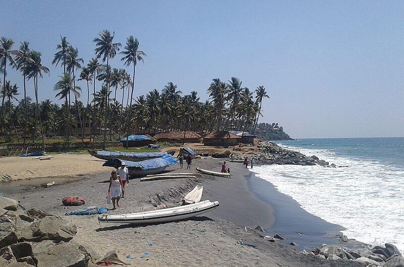 Что означают флаги на пляжах Гоа?