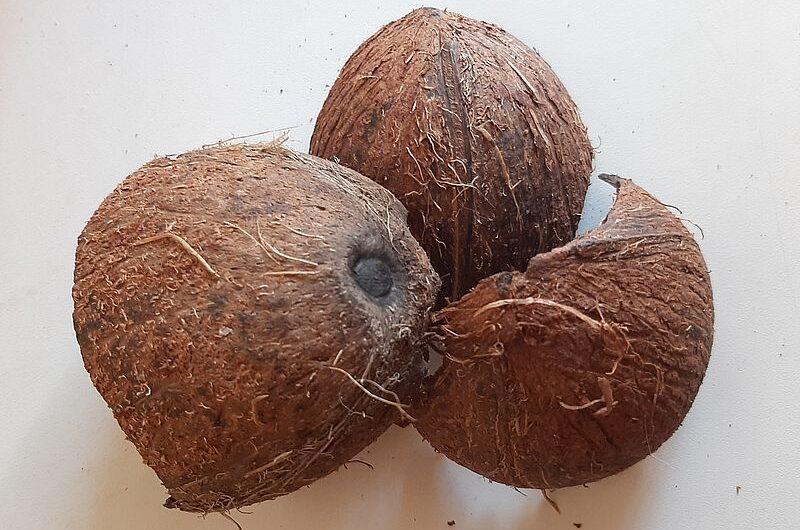 Зачем в храмах Индии разбивают кокосы?