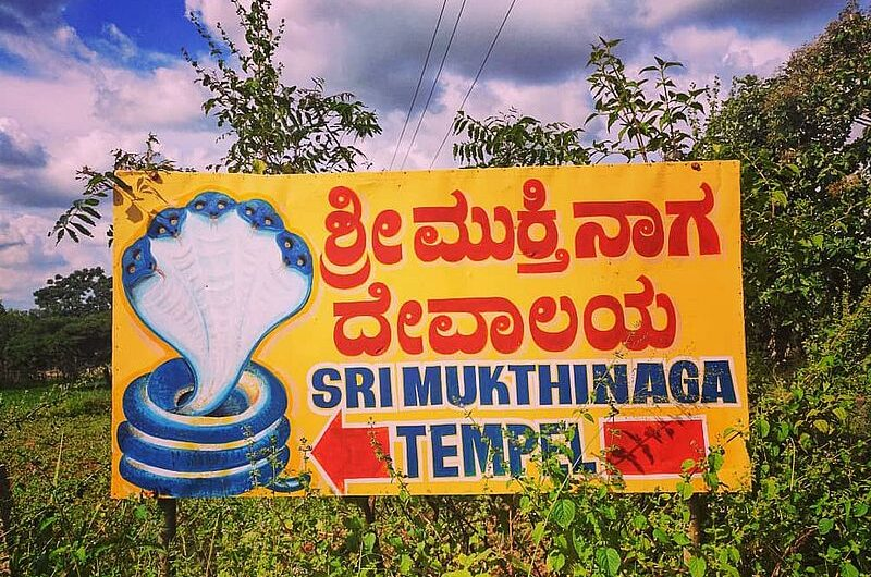 Мукти Нага Темпл: змеиный храм в Бангалоре